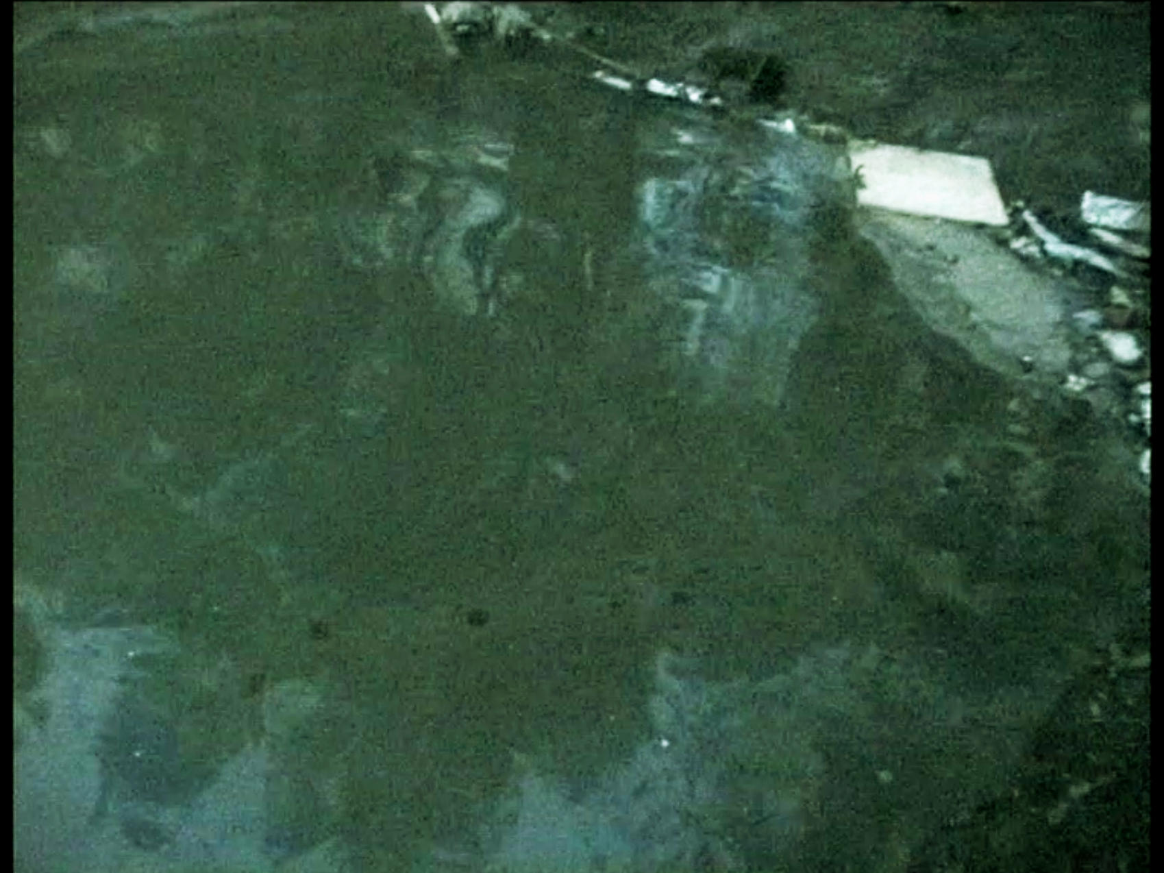 Peng Yu, Exile, 2000. Video still. Collection of M HKA /Museum of Contemporary Art, Antwerp.