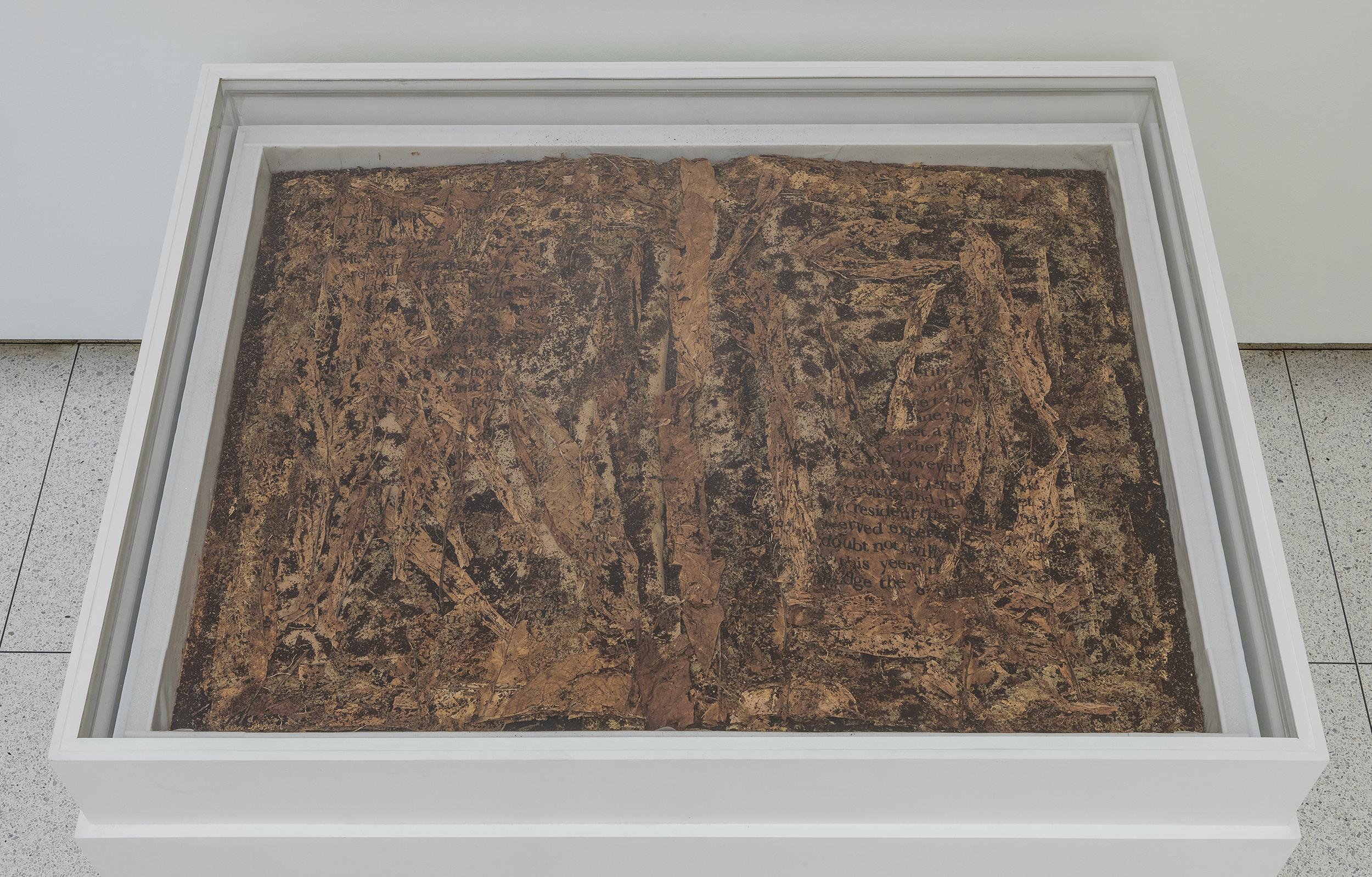 Xu Bing, Tobacco Book, 2011